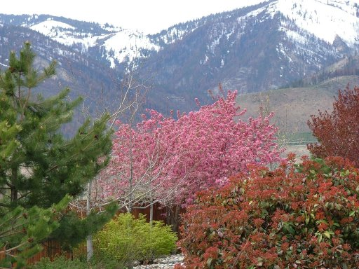 Carson Valley Photo by Garry Hamilton